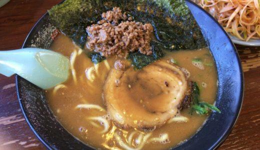 【ラーメン日記】多賀城市の家系 一品堂|味噌らーめん&挽肉ライス&別皿ネギ