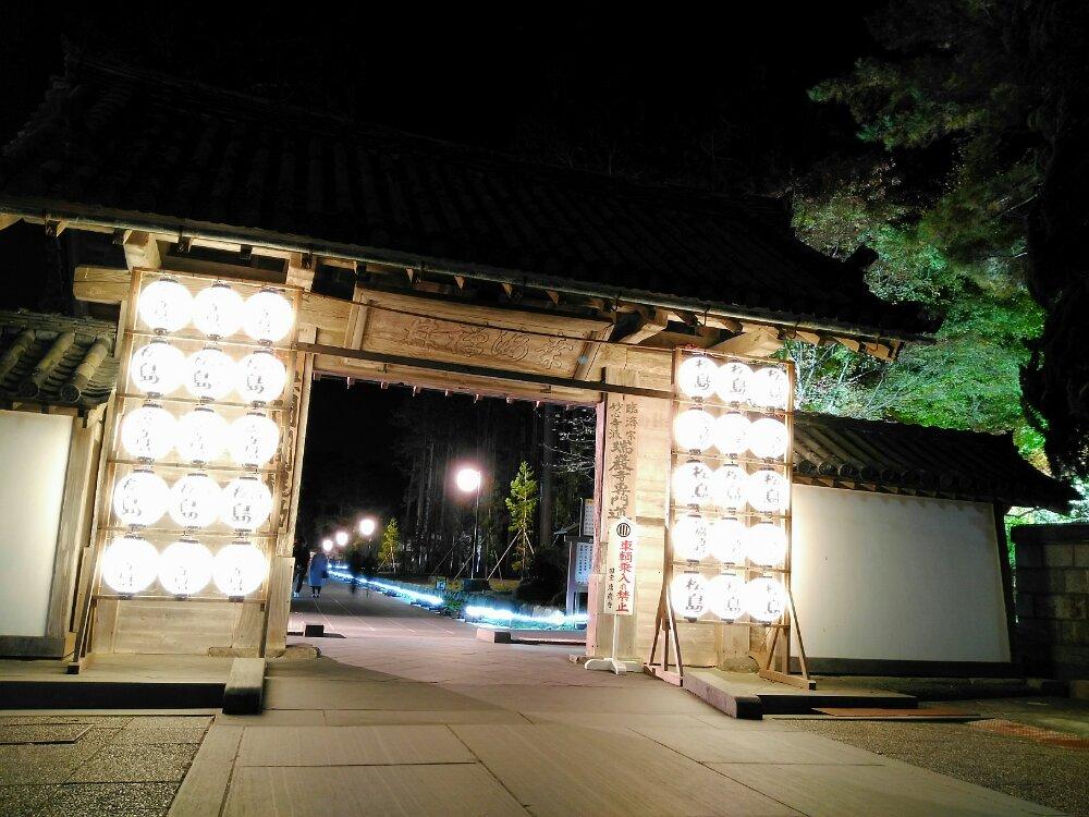 瑞巌寺の総門ライトアップ