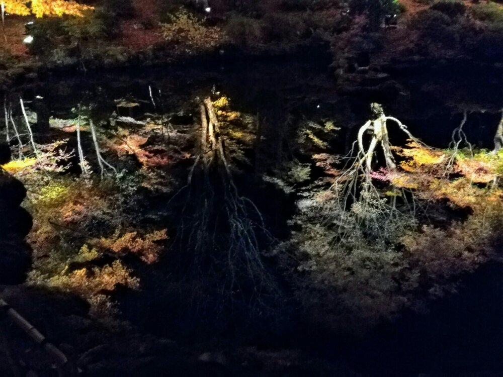 円通院心字の池に写る紅葉