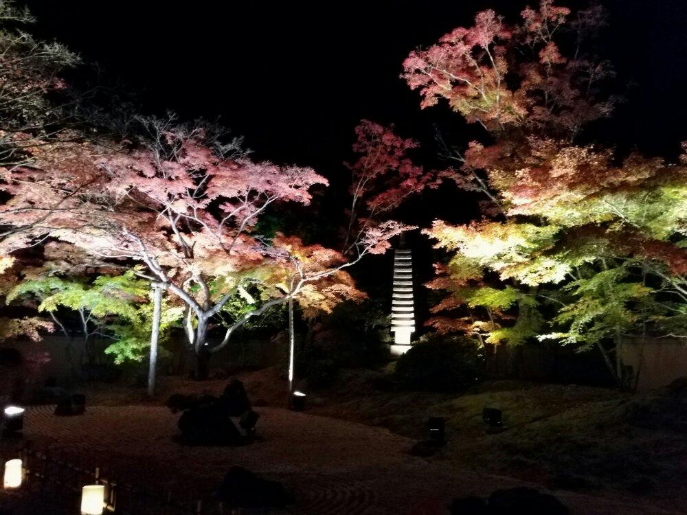 松島円通院の紅葉