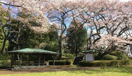 【公園レポート】利府町 館山公園(利府城跡)|美しい桜でお花見!